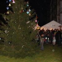 2011_12_17_17dec.goedewensenboom_1589