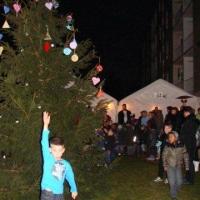 2011_12_17_17dec.goedewensenboom_1590