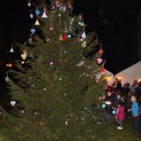 2011_12_17_17dec.goedewensenboom_1591